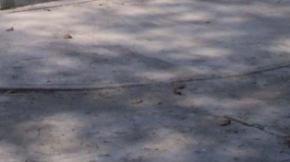 Caminerías deterioradas. en la Plaza Bolívar de Sucre, Cojedes.