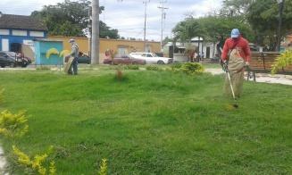 Arreglos de jardinería ordenados por municipalidad en mayo de 2016. Foto alcaldía de Tinaco.