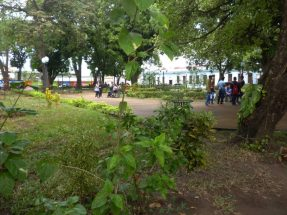 Vista general de la Plaza Luis Razetti.