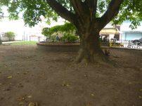 La arena desnuda en la plaza Páez. Foto Marinela Araque, mayo 2017.
