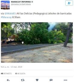 Tuit donde se denuncia el abatimiento del árbol de la Av. Las Delicias. Foto @Walo83.