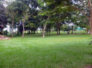 Áreas verdes del cementerio Parque Jardín Nuestra Señora del Rosario, Barinas, Venezuela.